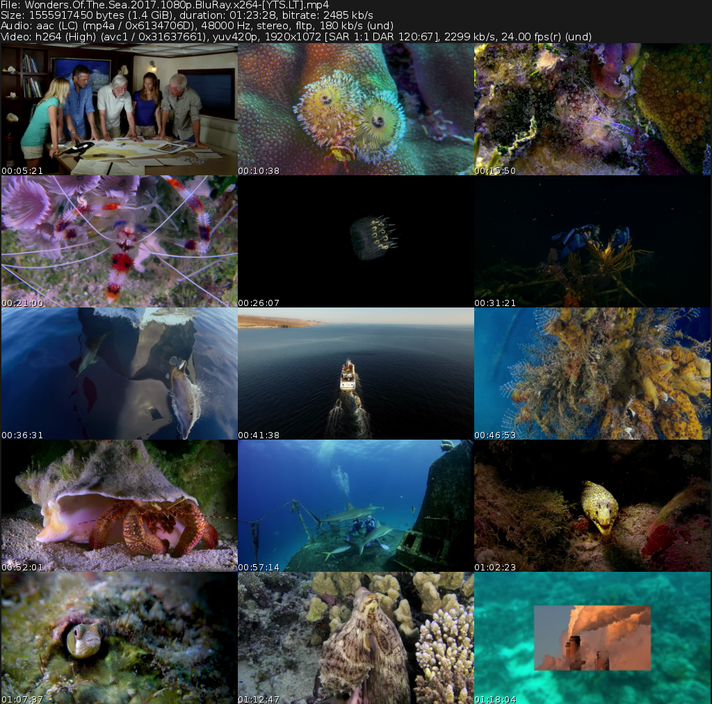 Wonders of the Sea 3D Movie